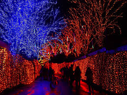 oregon zoo lights 2017 on 30th anniversary oregon zoo extends zoolights until january 7