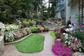Backyard Plants Ideas 4 Best Backyard Landscape Ideas Green Your Home Now