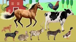 farm animals name and sound kids learning handplaytv animals
