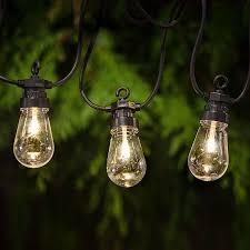 garden party string lights from jackson u0026 perkins