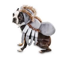 bootique spider dog costume petco