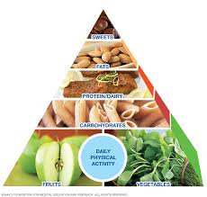 the mayo clinic diet a weight loss program for life mayo clinic