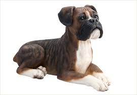 shadow brindle boxer pet urn