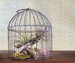 Home Interior Bird Cage Decor Home Designs Page 2 Sophisticated Artistic Home With