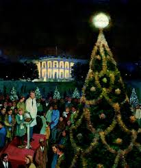 our national christmas tree our white house looking in