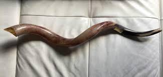 shofares de israel shofares de israel vida judaica website 151 photos