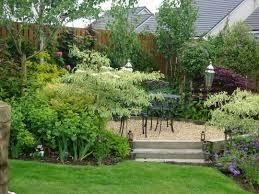 tree for small garden cori u0026matt garden