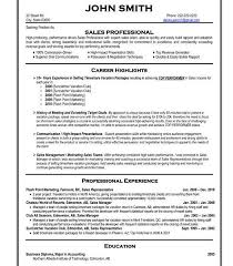 download professional resume example haadyaooverbayresort com