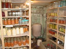 root cellar need to do this under my house homestead y projects