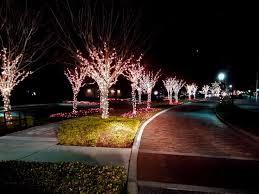 56 best outdoor tree lighting images on outdoor tree