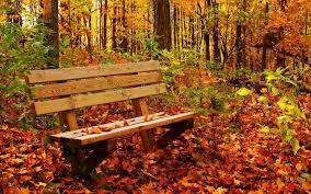 autumn pumpkin wallpaper desktop fall backgrounds