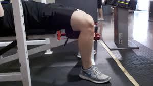 bench press robertson training systems