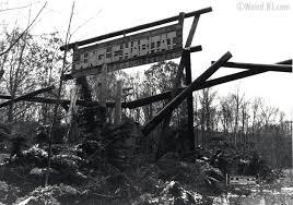 jungle habitat wild free abandoned weird nj