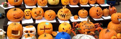 Bay Farm s annual pumpkin decorating contest draws crowds