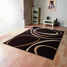 Inexpensive Area Rug Ideas Awesome Best 25 Cheap Large Area Rugs Ideas On Pinterest Cheap