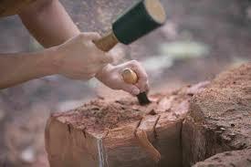 wood sculpture singapore sss wood sculpture symposium 2016 my guides