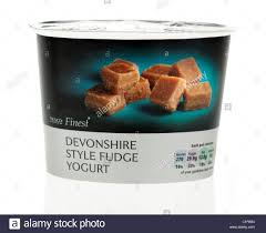 carton of tesco finest west country devonshire style fudge yogurt