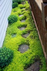Basic Backyard Landscaping Ideas by 267 Best My Zen Garden Inspirations Images On Pinterest