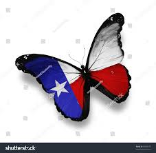 Image Of Texas Flag Texas Flag Butterfly Isolated On White Stock Illustration 99209675
