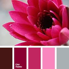 Pink And Grey Color Scheme 25 Best Pink Light Shades Ideas On Pinterest Light Pink Color