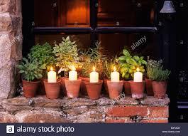 terracotta pots and herbs stock photos u0026 terracotta pots and herbs