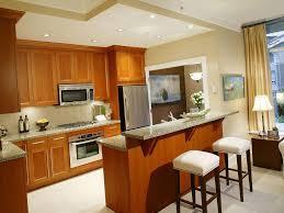kitchen fancy small kitchen remodel ideas on budget kitchen