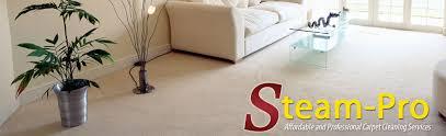 upholstery cleaning nashville upholstery cleaning nashville design for garden property