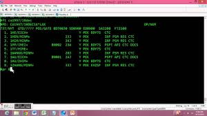 scapy guide how to check in passengers in dcs system travelsky technology