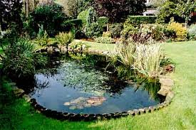 designing outdoor ornamental pond kitchen ideas