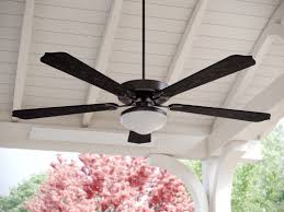 ceiling fan outdoor blades fleur de lis living 52 beaton 5 blade outdoor ceiling fan reviews