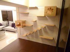 Wall Shelves For Cats Cat Wall Shelves Cat Stuff Pinterest Cat Wall Shelves Cat