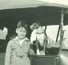 american pit bull terrier history official pit bull site of diane jessup