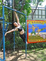 Backyard Pull Up Bar by Pull Up Bar