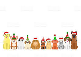 cats and dogs border set with christmas party hat stock vector art