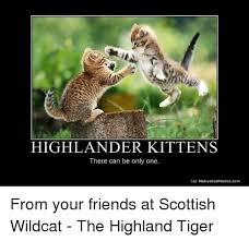 There Can Only Be One Meme - highlander kittens there can be only one vo motivatedphotoscom from