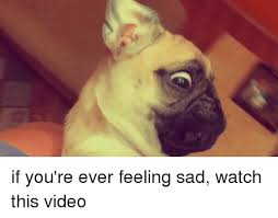 Feeling Sad Meme - if you re ever feeling sad watch this video funny meme on