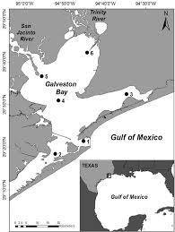 Galveston Map Map Of Galveston Bay Texas Usa Showing The Locations Of The Six