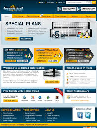 professional hosting site comes with whmcs template web