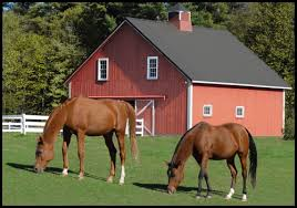 Horse Barn Builders In Florida Horse Barns U2013 Country Wide Barns