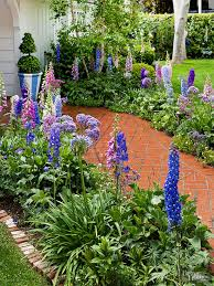 Blue Ribbon Landscaping by What Should I Plant Together Delphiniums Blue Ribbon And Plants