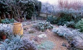 Winter Garden Jobs - january jobs for your garden oddy fencing