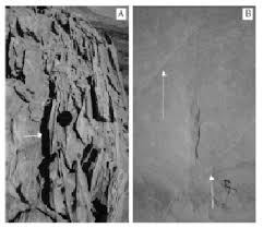 Sedimentology And Geochemical Evaluation Of Regional Evaluation Of Single Layer Reservoir Collapse