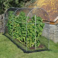 long domed roof fruit cage gardening pinterest gardens