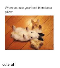 Cute Friend Memes - 25 best memes about best friend best friend memes
