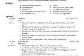 Resume Examples Server by Fine Dining Server Resume Example The Creek Restaurant Server