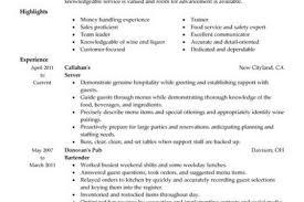 sample server resume sample server resume berathen com