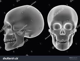 halloween human skull over black background stock vector 705981295