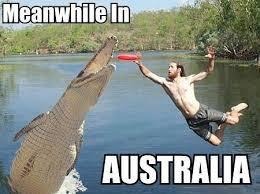Australia Meme - meanwhile in australia memes