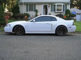 2004 Mustang Cobra Black 2004 White Mustang 2004 White Mustang Cobra Svt New Jersey