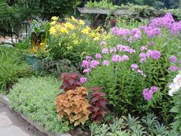 flower garden layout garden ideas cutting flower garden design 15 fast growing